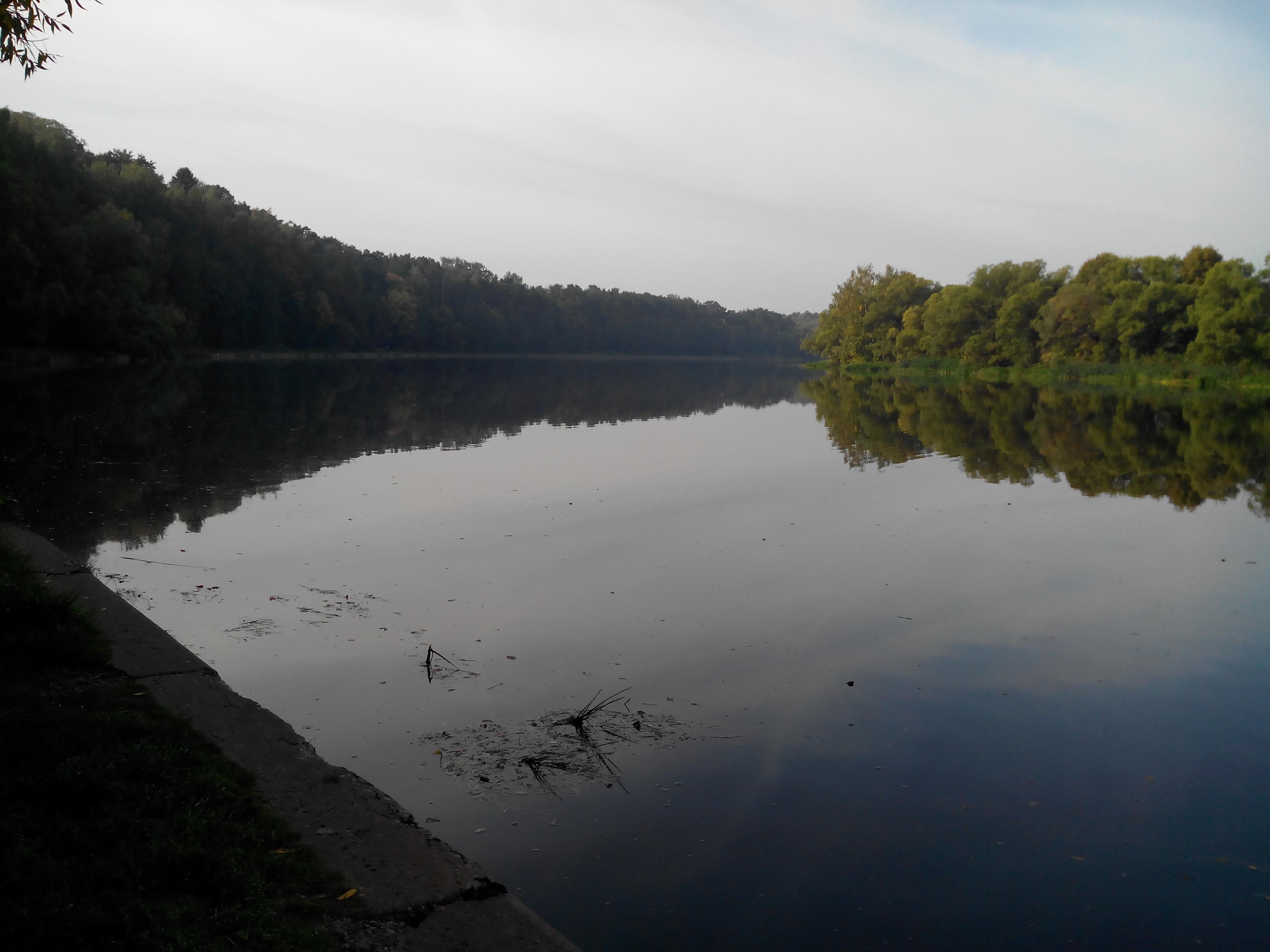 Тишь и гладь реки