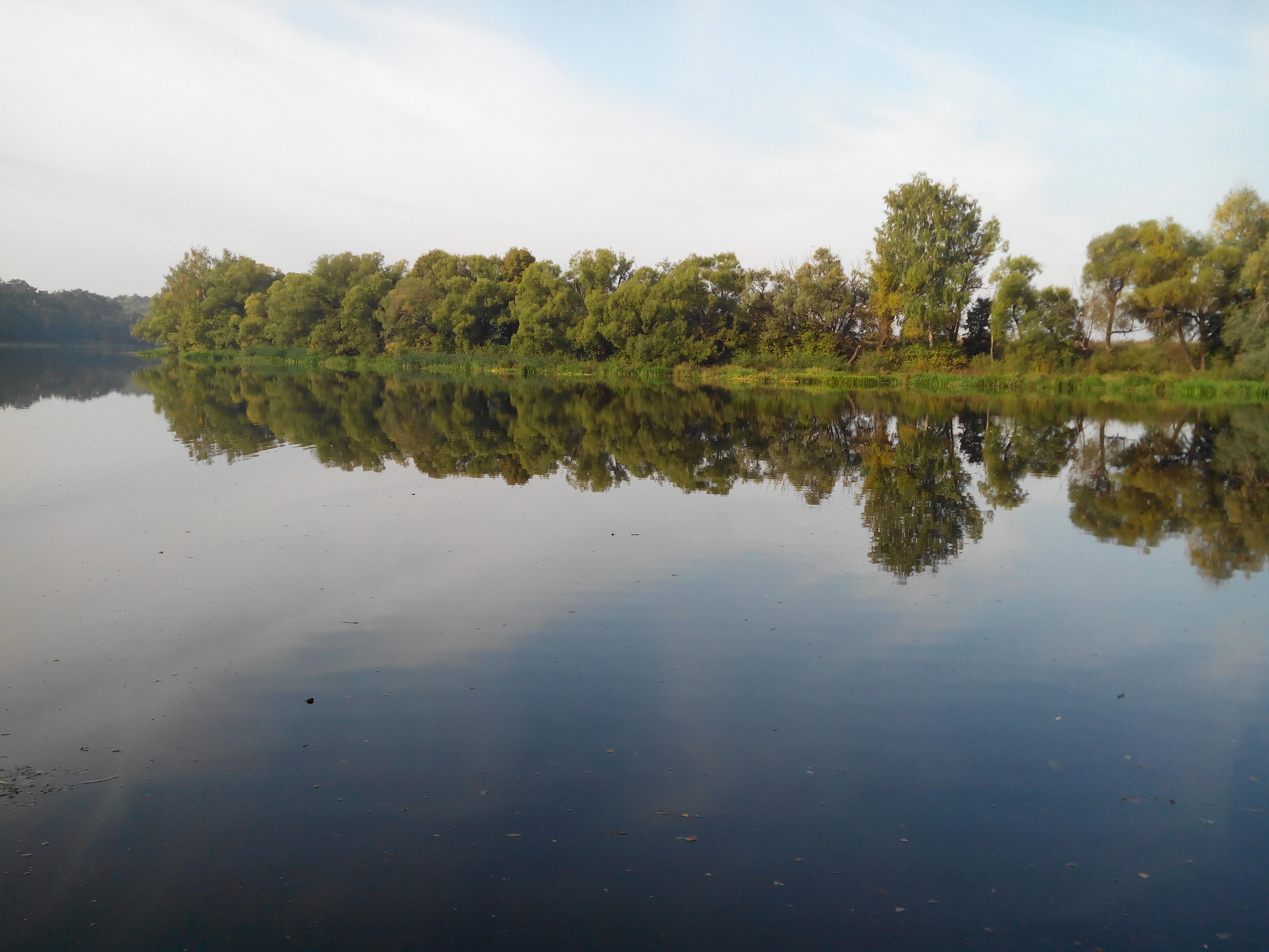 Противоположный берег реки